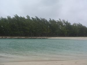 鹿岛对面的小岛,退潮的时候可以走过去,不用涉水。